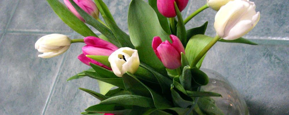 Bouquet di nascita 1