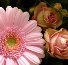 Bouquet di nascita 5